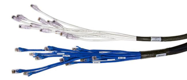 Cable troncal de cobre mini Cat6